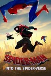 Spider-Man: Into the Spider-Verse DVD - 10229557
