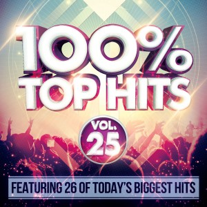 100% Top Hits Vol. 25 CD - CSRCD418