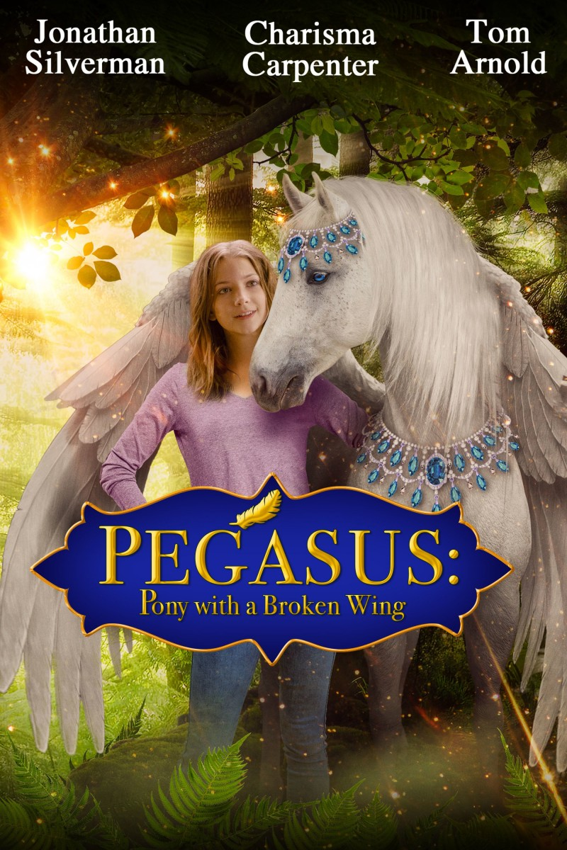 Pegasus: Pony With a Broken Wing DVD - 10229279