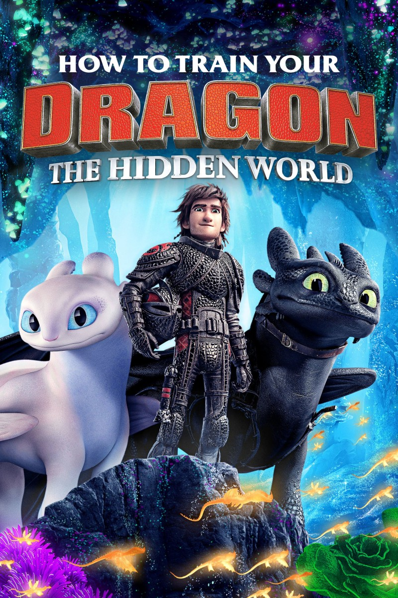 How to Train Your Dragon: The Hidden World DVD - 635870 DVDU