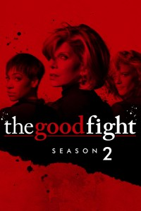 The Good Fight: Season 2 DVD - WS148770 DVDP