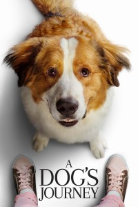 A Dog's Journey DVD - 04336 DVDI