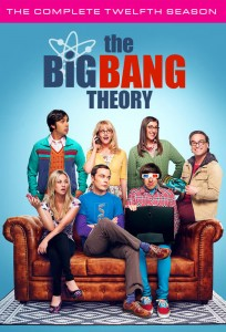 The Big Bang Theory: Season 12 DVD - Y35290 DVDW