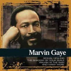 Marvin Gaye - Collections CD - CDCOL7035