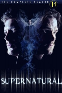 Supernatural: Season 14 DVD - Y35101 DVDW