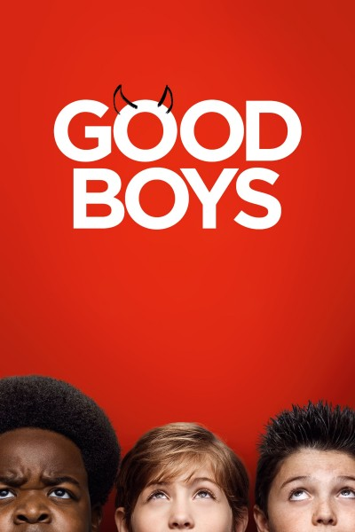 Good Boys DVD - 719546 DVDU