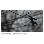 Ashton Nyte - Waiting For A Voice CD - INT037