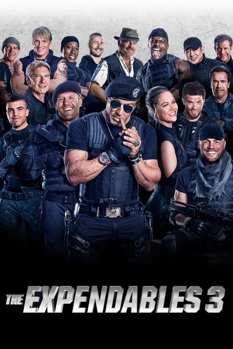 The Expendables 3 DVD - LGD95147