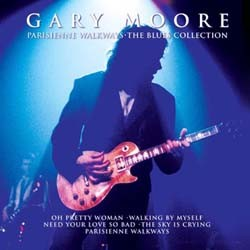 Gary Moore - Blues Collection CD - CDGOLD 102