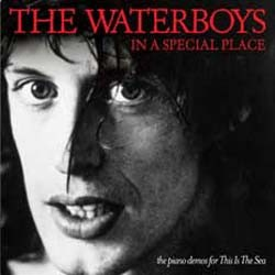 The Waterboys - In A Special Place (The Piano Demos For 'This Is The Sea') CD - CDP 0984102