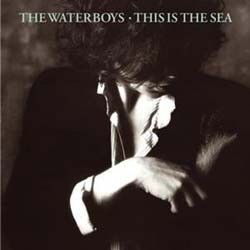 The Waterboys - This Is The Sea CD - 07243 5914512