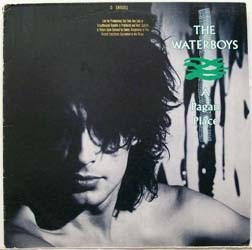 The Waterboys - A Pagan Place CD - 07243 5377042