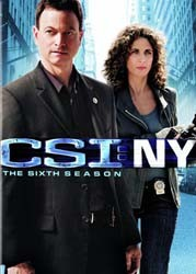 CSI: NY: Season 6 DVD - MP1009DL