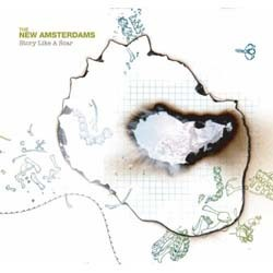 The New Amsterdams - Story Like A Scar CD - VR429