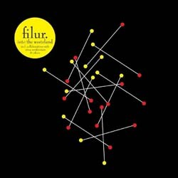 Filur - Into The Wasteland CD - VVR1039932