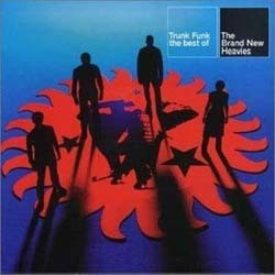 The Brand New Heavies - Trunk Funk - The Best Of CD - WICD 5287