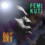 Femi Kuti - Day By Day CD - WRASS 228