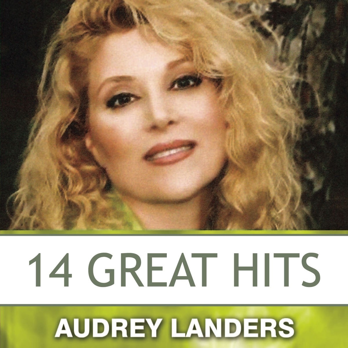Audrey Landers - 14 Great Hits CD - CDSM560