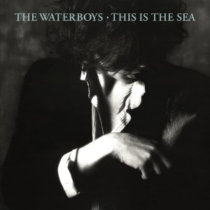 The Waterboys - This Is The Sea VINYL - 2564622380