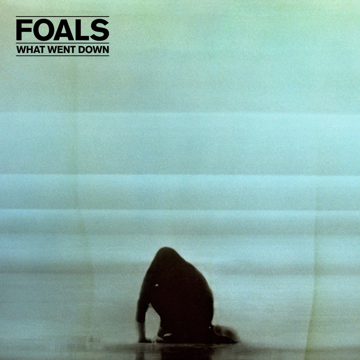 Foals - What Went Down CD - WBCD 2350