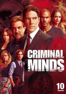 Criminal Minds: Season 10 DVD - 10225910