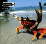 The Prodigy - The Fat Of The Land VINYL - XLLP121
