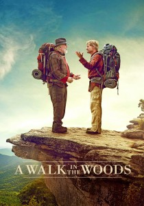 A Walk in the Woods DVD - 10226038