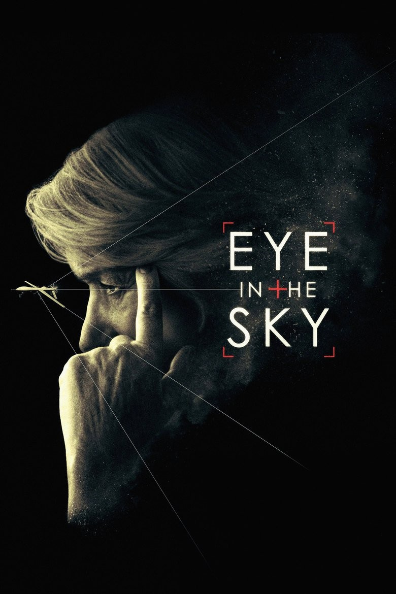 Eye in the Sky DVD - 04169 DVDI