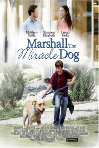 Marshall's Miracle DVD - ITNDVD 014
