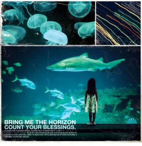 Bring Me The Horizon - Count Your Blessings VINYL - 050538002843