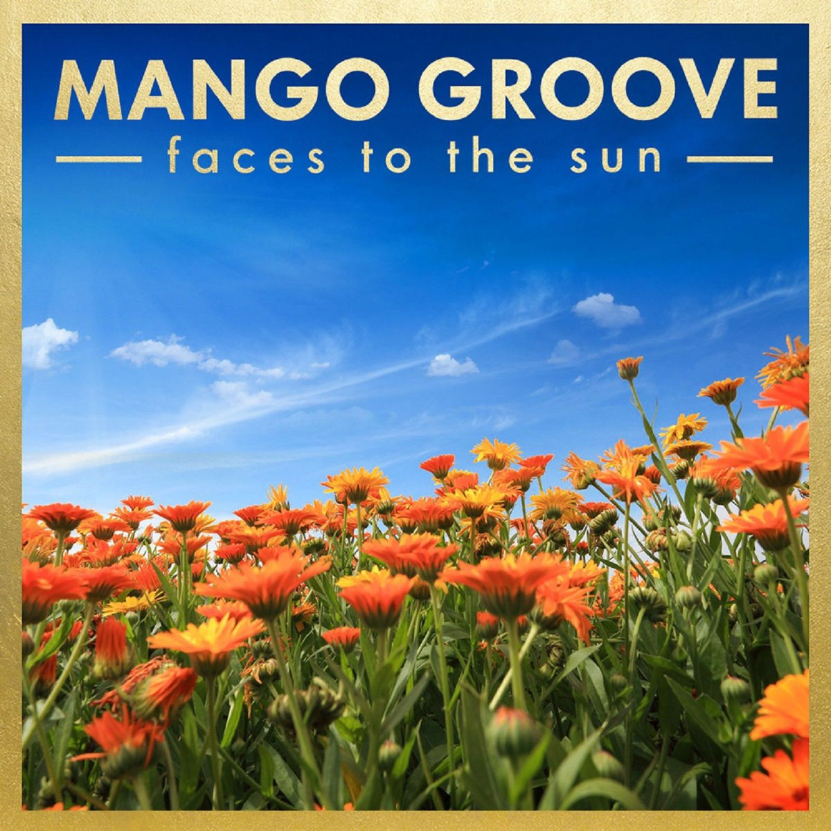 Mango Groove - Faces To The Sun CD - 9029589216