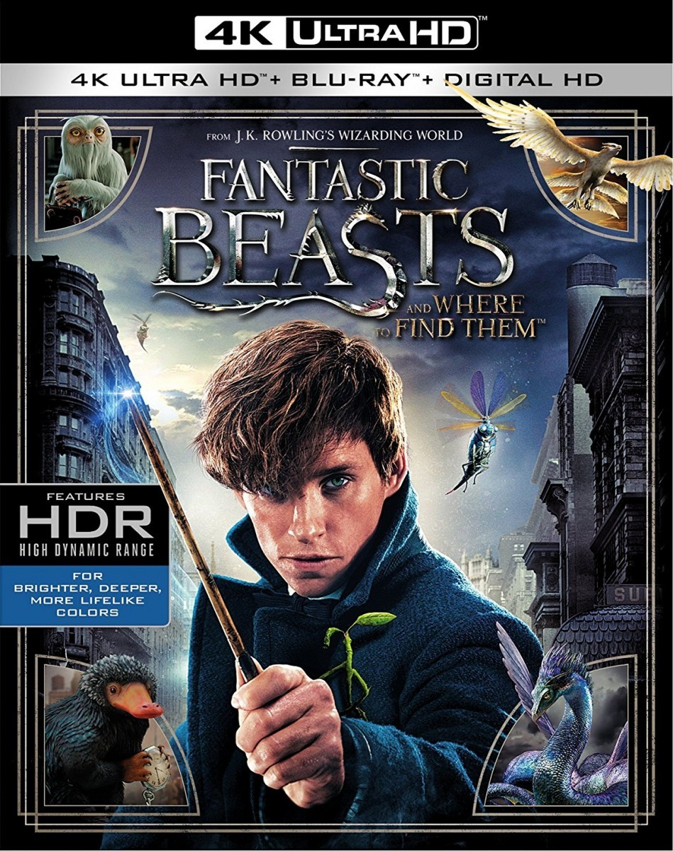 Fantastic Beasts and Where to Find Them 4K UHD+Blu-Ray - Y34562 BDW