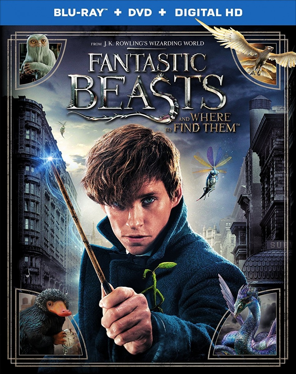 Fantastic Beasts and Where to Find Them Blu-Ray - Y34560 BDW