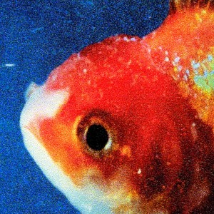 Vince Staples - Big Fish Theory CD - 06025 5744572