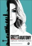 Grey's Anatomy: Season 13 DVD - 10227980