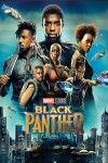 Black Panther DVD - 10228532