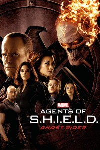 Marvel's Agents of S.H.I.E.L.D.: Season 4 DVD - 10228618