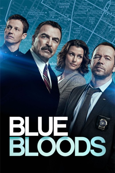 Blue Bloods: Season 8 DVD - EU144358 DVDP