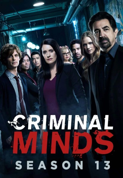 Criminal Minds: Season 13 DVD - 10229291