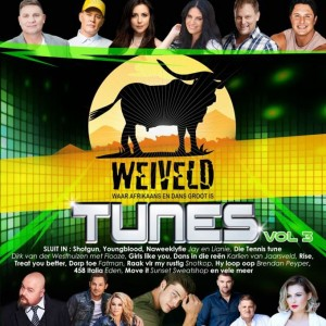 Weiveld Tunes Vol. 3 CD - CDJUKE 209