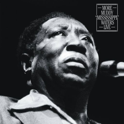 "Muddy Waters - More Muddy ""Mississippi"" Waters Live (RSD Black Friday 2018) VINYL - 19075865561"