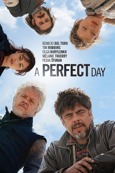 A Perfect Day DVD - BSF 087
